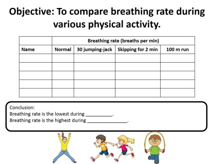 template breathing rate acitivity